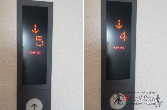 엘리베이터 펫 PET 버튼 エレベーター ペットボタン