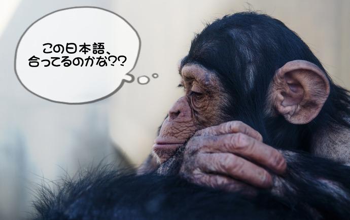 일본어 작문 확인 방법