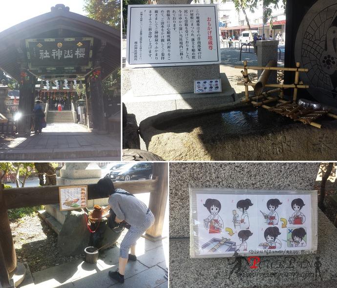 사쿠라야마 신사 桜山神社