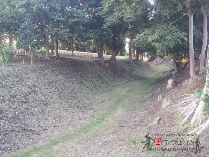 네성 토우젠지 根城 東善寺