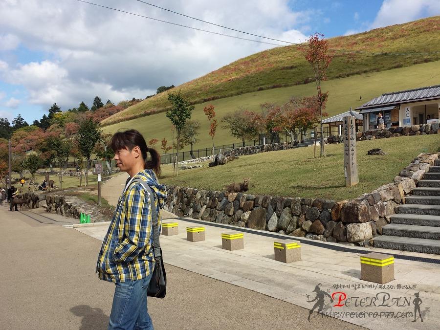 나라 와카쿠사야마 奈良 若草山
