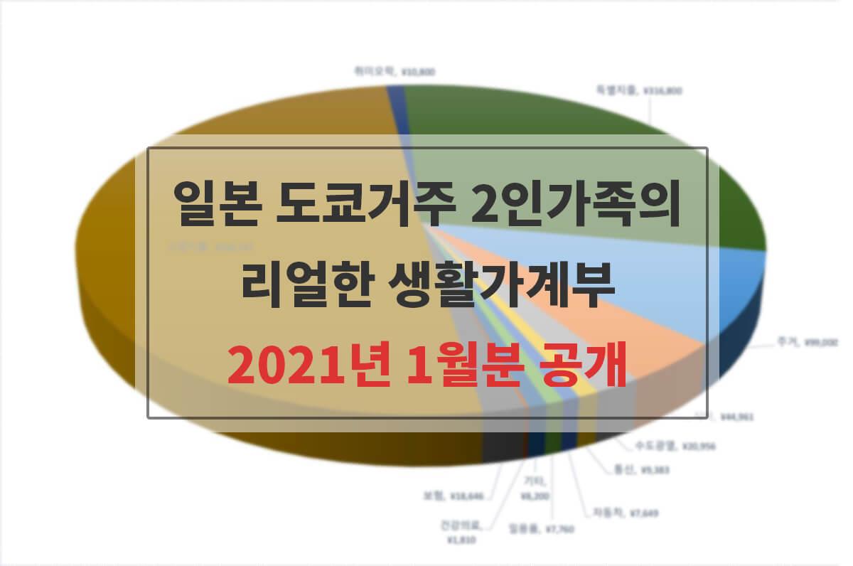 2021년 1월분 가계부 공개